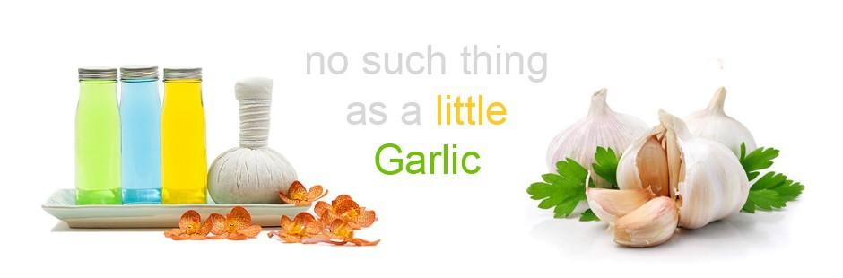 Garlic exporter in Madhya Pradesh